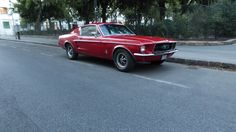 Red 1968 Ford Mustang Fastback in Budapest 1968 Ford Mustang Fastback, Classic Mustang, Budapest, Red