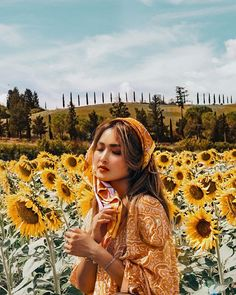 The last sunflower field we found in Tuscany Sunflower Fields, Tuscany, That Look, Travel, Viajes, Tuscany Italy, Trips, Traveling, Tourism