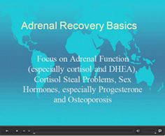 Adrenal Fatigue and Adrenal Exhaustion:  Adrenal Recovery Basics