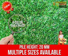 Best Quality Synthetic Grass 20mm Great Sandy Artificial Lawn $18.99 per sqm Garden Mats, Lawn And Garden, Home And Garden, Fake Lawn, Fake Grass, Beautiful Home Gardens, Beautiful Homes, Lawn Turf, Synthetic Lawn