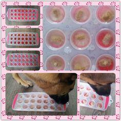 Spel 11 (hondenspel hond spel denkwerk hersenwerk brain dog game play diy) www.facebook.com/denkspellenvoorjehond