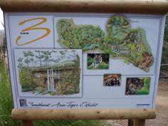 San Diego Zoo Safari Park Tiger Trail (Version 2.1) San Diego Zoo, Zoos, Cool Places To Visit, Museums, Habitats, Parks, Safari, Trail, Asia
