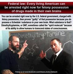 Just one example of how, for the most part, the war on drugs is stupid as hell. Dmt