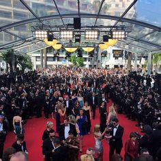 Ouverture du 68eme Festival de Cannes #TagsForLikes #Like #instadream #frenchriviera | OnInStagram