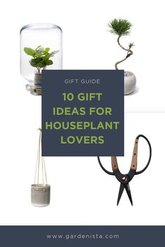 Holiday gift ideas from the Gardenista editors for houseplant lovers. Indoor Garden, Indoor Plants, Gift List, Houseplants, Container Gardening, Gift Guide, Holiday Gifts, Place Card Holders, Lovers
