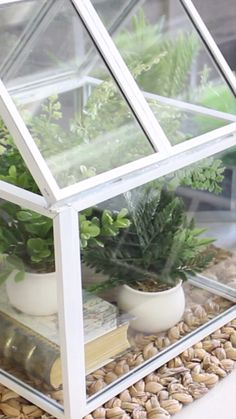 Turn Picture Frames into a Greenhouse (Dollar store or yard sale finds!) - Turn Picture Frames into a Greenhouse (Dollar store or yard sale finds! Diy Garden Decor, Garden Art, Garden Design, Greenhouse Gardening, Greenhouse Ideas, Homemade Greenhouse, Diy Mini Greenhouse, Cheap Greenhouse, Portable Greenhouse