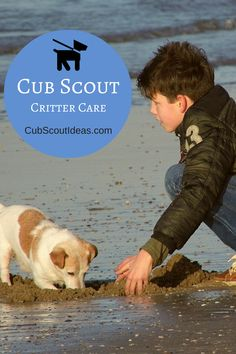 Useful resources for the Bear Cub Scout elective adventure, Critter Care. http://cubscoutideas.com/7052/critter-care-adventure-useful-resources/