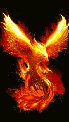 Pin by Johnlawrence Pangantihon on That is very cool Phoenix bird art Phoenix artwork Phoenix wallpaper