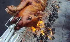 The Roasting Pig look at the history of the hog roast, how cooking helped it evolve throughout the ages and how it has moved on from an essential part of medieval cooking.