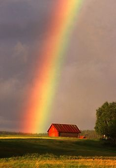 rainbows... i swear this looks like the farm in Michigan