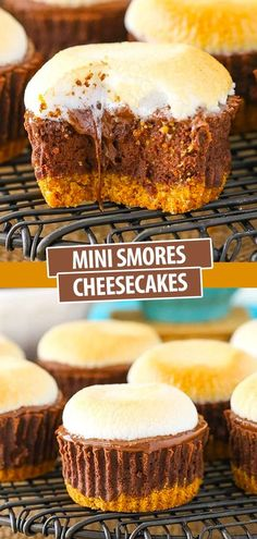 These easy Mini S'mores Cheesecakes are made with a graham cracker crust, chocolate filling, melted chocolate and toasted marshmallows on top! It's such a fun fall recipe – with or without the campfire! Best Chocolate Desserts, Chocolate Filling, Decadent Chocolate, Mini Cheesecake Recipes, Best Cheesecake, Baking Recipes, Dessert Recipes, Melted Chocolate, Mini Cheesecakes