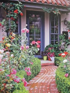 Front porch design for a small garden. Climbing blaze rose, containers, low, curved boxwood surrounded by a variety of other roses. Colorful.