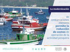 La modernización de embarcaciones menores permite la reducción de costos de operación de la actividad pesquera. SAGARPA SAGARPAMX #MéxicoSiembraÉxito