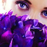 Find Woman Purple Flowers Focus On Flowers stock images in HD and millions of other royalty-free stock photos, illustrations and vectors in the Shutterstock collection. Types Of Purple Flowers, All Things Purple, Do Eyelashes Grow Back, Thicker Eyelashes, Feng Shui Energy, Feng Shui Colours, Eyelash Conditioner, Beautiful Eyelashes, Feng Shui Tips