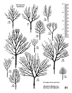 Architectural Scale Model Trees by Microform Models, Inc. - trees are made of bendable metal allow