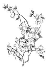 Afbeeldingsresultaat voor chinese bloemen tattoos