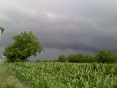A Storm approching from south-west. Photo taken in Calendasco - near Piacenza. Emilia-Romagna