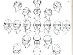 HANDOUT: Angles of the head and face.