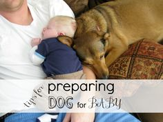 dogandbabytips Love at First Sight: How to Get Your Pup Ready for Baby
