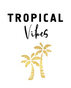 TROPICAL VIBES - Palm Trees and Beaches -  Everybody loves the tropical vibe, the tropical girls, the tropical life and the tropical energy. Blue oceans, big beaches and good people. Yummy cocktails and fresh bars, WELCOME THE TROPICAL VIBES!  tropical vibes beaches palm trees people energy island gold typography