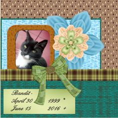 [Here is my June 2016 Bandit page made with the loving OSLS-Ayla-DesktopBonus0616 , thanks Anja Bandit is no more , we decided to put him in a sleep. he was old and sick.17 years old. Now he is over the rainbow. thanks Bandit for all the years of fun in house Wissing. shadowed a bit font  Script pict. my own