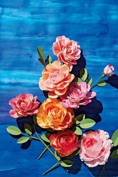 How to Make an Eden Rose