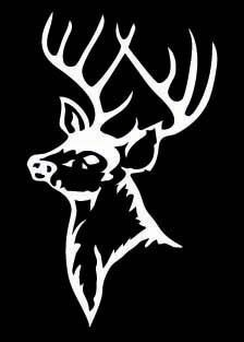 Country Life Deer Skull Head Window DECAL Sticker Colors X - Hunting decals for truckshuntingfishing window decals in white or camouflage at woods