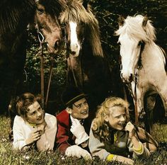 Mädels vom Immenhof 1955