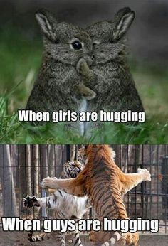 Hugs. All shapes.  All sizes.