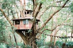 How about getting hitched in a tree house of love? Try Boomerang Farm, Mudgeeraba, Gold Coast.