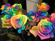 Here's a tutorial on how to turn white roses into multicolored ones! Make rainbow roses by splitting the stems into strands and placing each one in food coloring. The roses draw the food coloring into the petals Fun Crafts, Arts And Crafts, Making A Bouquet, Rainbow Roses, Rainbow Stuff, Colorful Roses, Button Crafts, Food Coloring, Pretty Flowers