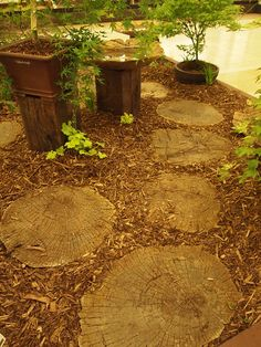 Nice paving using tree trunk slices by dewelch, via Flickr