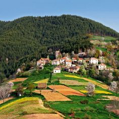 Village In The Rodopi mountains.