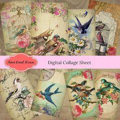 Kiwi Card House : Vintage Bird Collage Sheets