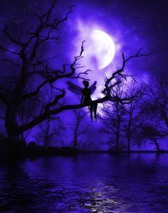 Rêverie de fée sous la lune