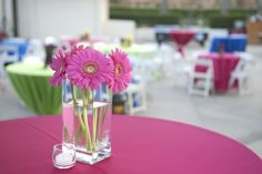 Sharing Icons Pink Gerbera, Little Flowers, Color Pop, Daisy, Table Decorations, Gallery, Projects, Inspiration, Icons