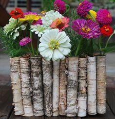 Folded Birch Planter–The Everyday Gardener | Amanda Jane Brown