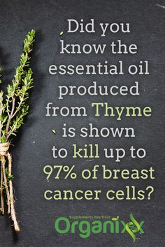 Did you know that essential oil produced from Thyme can kill up to 97% of breast cancer cells? Follow the link through to learn more about essential oils and their benefits to your health!