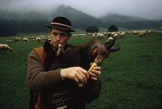 A Polish shepherd plays a kobza for his flock of sheep