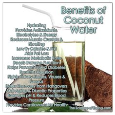 Coconut water is a very popular drink and is consumed by people of all ages across the world. It is touted for its healing and medicinal properties. It is a gift of nature that benefits us both internally when ingested and externally when applied topically. On top of that, it is easily available and affordable too.