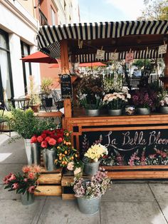 Best 45 Farm Stand Display Ideas For Alternative Beautiful Display Ideas Flower Truck, Flower Cart, French Flowers, Beautiful Flowers, Colorful Flowers, White Flowers, Trees With White Bark, Flower Shop Interiors, Flower Farmer