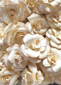 Live The Dream: Paper Rose Tutorial