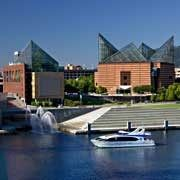 Downtown Chattanooga Area Attractions – Chattanooga Packages #downtown #chattanooga #map http://kansas.nef2.com/downtown-chattanooga-area-attractions-chattanooga-packages-downtown-chattanooga-map/  # Chattanooga Packages Tennessee Aquarium Explore a cove forest where otters play. Feel the steam rise in a delta swamp where alligators lurk. Visit a tropical island, touch a stingray and surround yourself with butterflies. Stand in the shadows of sharks overhead and in awe of thousands of reef…