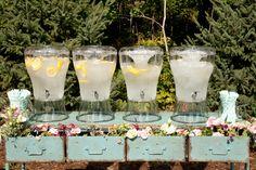 Real Door County Wedding ~ Lemonade. Photography by Michael Segal. Dessert Bar by The Cake Next Door.