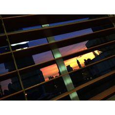 "@aaronsosaphotography's photo: ""Así se ve el atardecer en la City y el tornillo desde la ventana de nuestra casa. #panama #igersvenezuela #all_shots #insta_ve #natgeohub #instagramhub #instagramers #bwstyles_gf #photooftheday #picoftheday #streetphotography #instagood #streetphoto_bw #iphoneographer #photowall #mobilographer #instathings #bestpic #igerspty #instadaily  #ourbestshots #venezuelaforum  #iphonesia #soyvenezuela #gang_family #gf_ve #urbangangfamily #ampt_community #shootermag"""