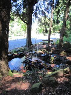 Hammelbach - Kalter Brunnen