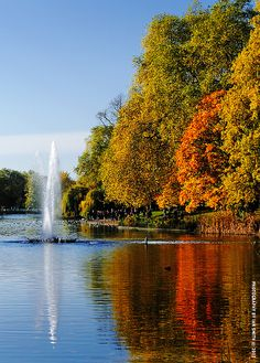 Autumn in St. James Park, London.