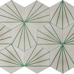 dandelion-bone-lawn-2-114851