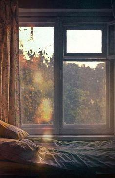 Мягкая, как земная постель Для лежачего камня — Мягкая, гладкая и холодная, Весна обняла меня Своими ладошками и руками. Богатая, словно запах Каменистой почвы, Когда она дышит влагой Через тонкие поры — Весна меня опутала Цветущими волосами; И мои глаза потемнели. Уильям Карлос Уильямс - «Тень» (Перевод Андрея Щетникова). В этом альбоме я использовал свои полевые записи, сделанные в период с мая 2012 по март 2017, а также записи с модифицированных закольцованных аудиокассет, на которые я…