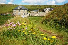 The Druidstone, Haverfordwest - Katherine said: beautiful coastline and views,communal feel, outside fires, beautiful pub and community garden and peace! Pembrokeshire Wales, Wedding Events, Wedding Ideas, Day Tours, Home And Away, Hotel Reviews, 15 Years, Trip Advisor, United Kingdom